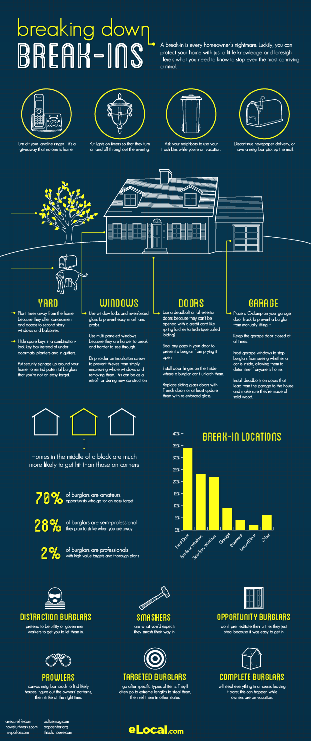 Break Ins Infographic