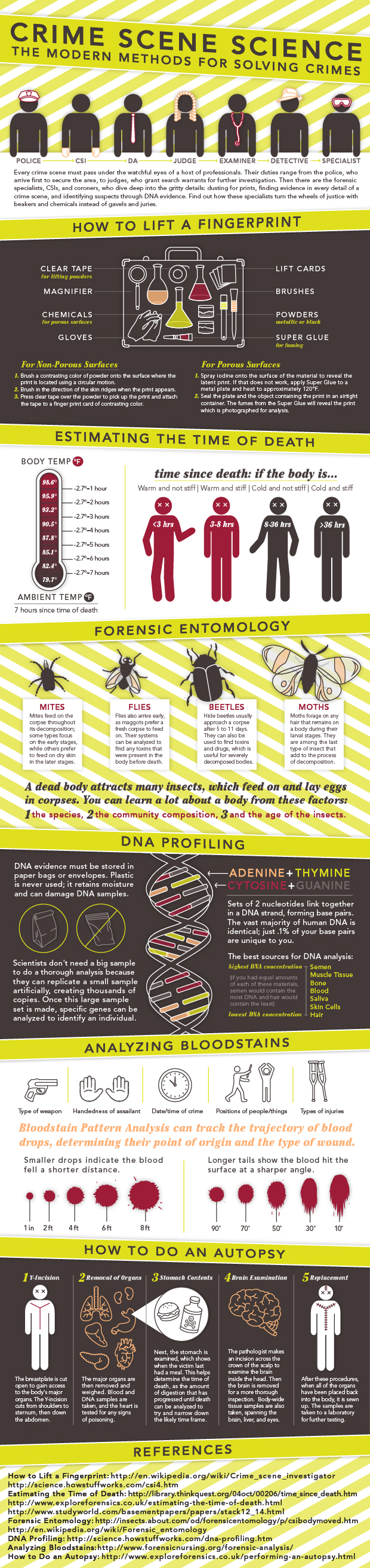 Crime Scene Science Infographic